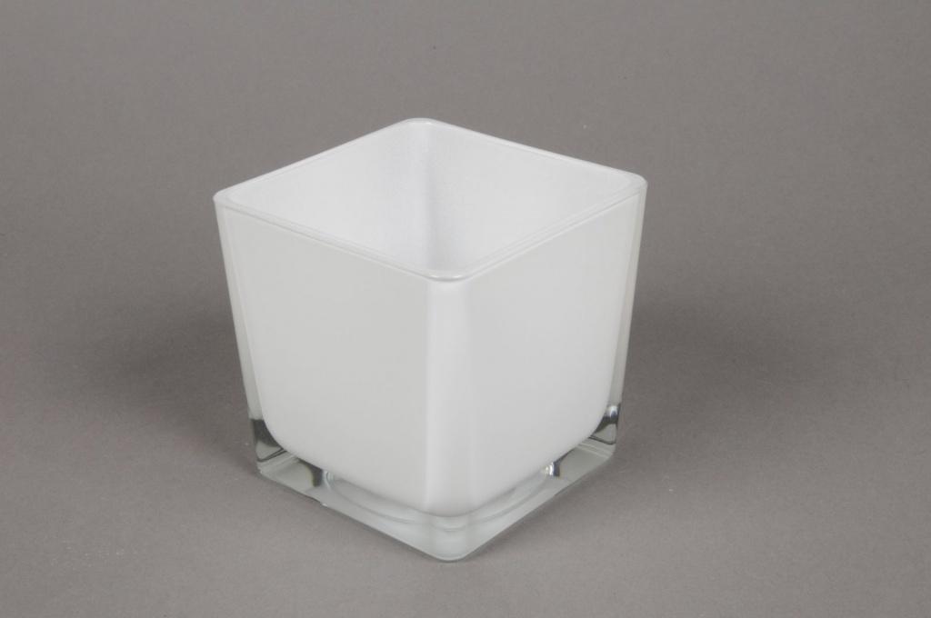 A027I0 Glass cube vase white 8x8cm H8cm