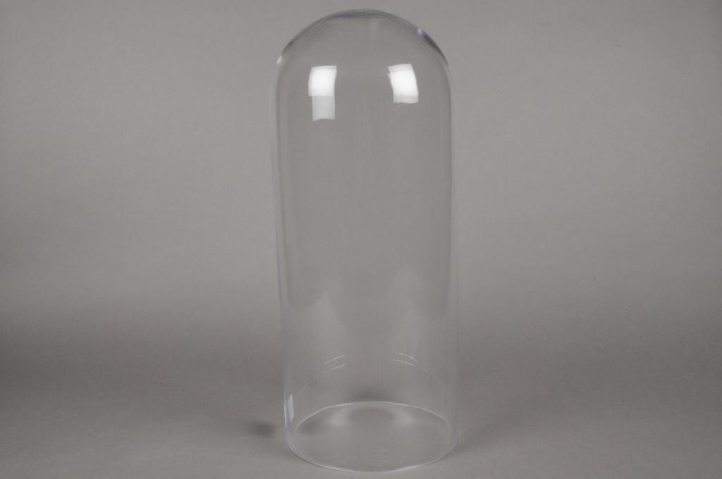 A007BX Glass dome D21.5cm H52.5cm