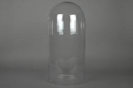 Glass dome D29 H60cm