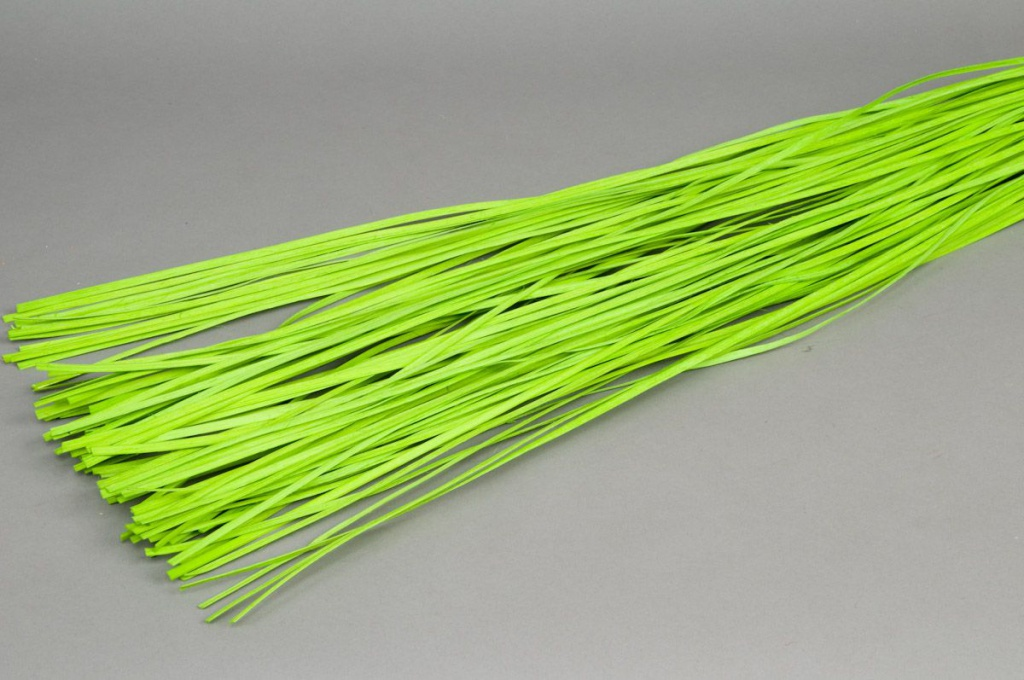 gs21mi Fagot rotin plat vert 110cm
