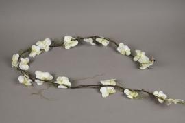 x013ga Guirlande de phalaénopsis blanc H155cm
