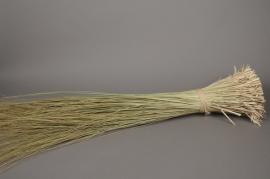 ho01mi Herbe tenax séchée vert de 2kg H125cm