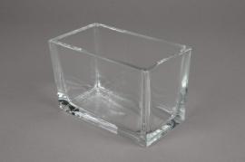 A025I0 Jardinière en verre 15cm x 8cm H10cm