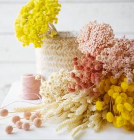 Lecomptoir.com - Fleurs séchées