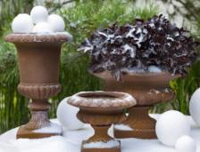 lecomptoir.com Articles pour le jardin