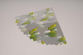 MU11QX Rame de 250 feuilles de cellophane 23.5 x 23.5cm