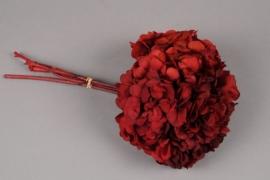 n445ab Hortensia préservé rouge H33cm