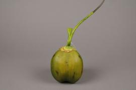 x250wh Noix de coco verte artificielle H14cm