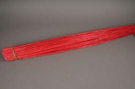 nv08sx Osier écorcé rouge H120cm