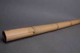 o149ab Set de 3 bambous naturel D4cm H210cm