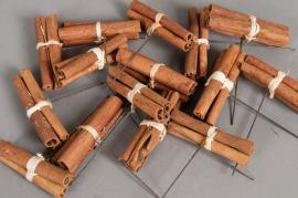 od22wg Cinnamon stem 8cm 20 pieces