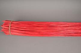 nv09sx Osier écorcé rouge H180cm