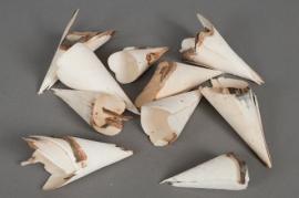 ov09mi Sachet de 20 cônes en bois naturel H12cm