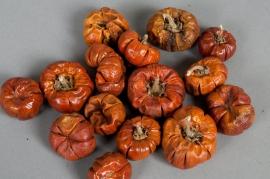 ox10wg Mini whole pumpkin  150g