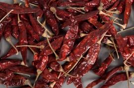 ox19wg Sachet de piment large rouge