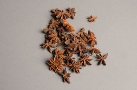 ox55wg Natural star anise