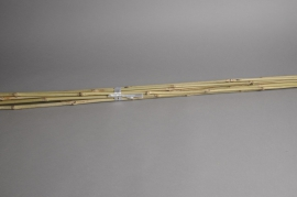 A022DN Pack of 10 natural bamboo stakes H180cm