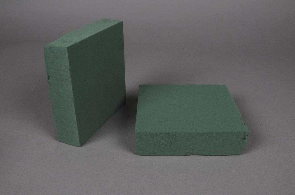 Q006QV Pack of 2 wettable foam mini squares