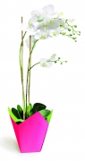 A240QX Pack of 25 fuchsia waterproof planters 7.5cm x 7.5cm H16cm