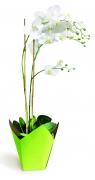 A246QX Pack of 25 green waterproof planters 8.5cm x 8.5cm H17cm