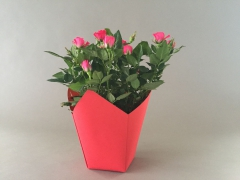 A239QX Pack of 25 red waterproof planters 7.5cm x 7.5cm H16cm