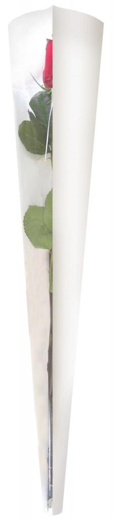 B091QX Pack of 50 white covers flower L13.5cm H55cm