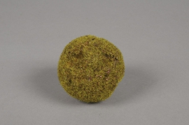 x424nn Pack of 6 artificial moss bals D7cm