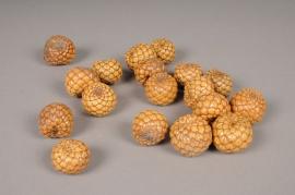 ox62mi Pack of 75 natural raphia fruit