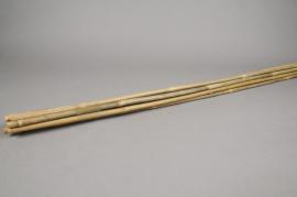 A021DN Paquet de 10 tuteurs bambou naturel 150cm