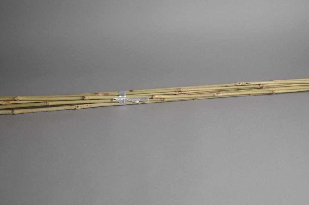A022DN Paquet de 10 tuteurs bambou naturel 180cm