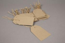 A000TG Paquet de 100 étiquettes kraft naturel 5.5cm x 9cm