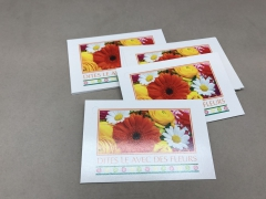 A392MQ Pack of 15 postcards
