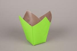 A179QX Paquet de 25 cache-pots en papier étanche vert 7.5cm x 7.5cm H16cm