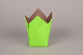 A246QX Paquet de 25 cache-pots en papier étanche vert 8.5cm x 8.5cm H17cm