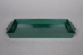 Paquet de 25 coupes vert 24.5x12.5cm