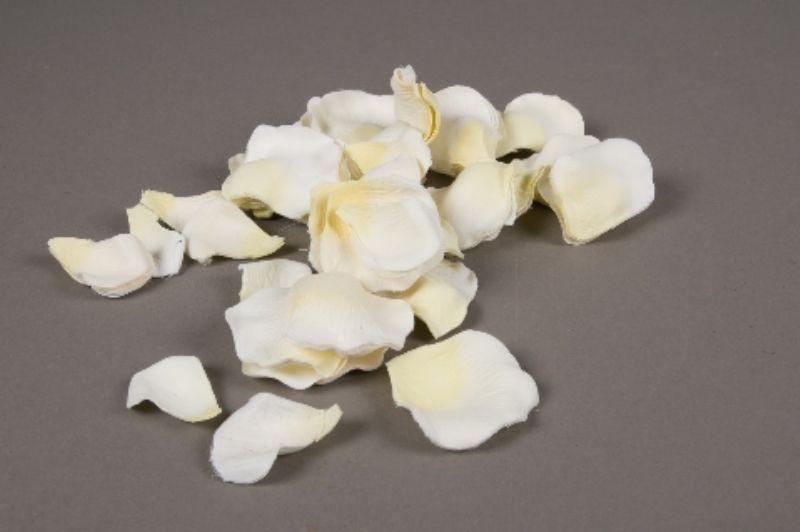 pt01ab Paquet de 250 pétales de roses artificielles blanches