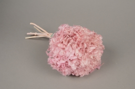 x152ab Pink preserved Hortensia H33cm