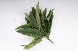 Piquet de fougère vert D50 H45 cm
