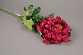 x271fp Pivoine artificielle rose bordeaux H81cm
