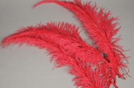 pl01ek Sachet de 5 plumes d'autruche rouge