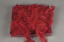 pl24lw Box of feathers bordeaux 45g