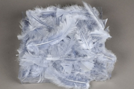 pl28lw Box of feathers grey 45g