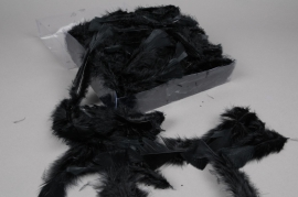 pl36lw Box of turkey feathers black 45gr