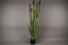 x004dg Pot de roseaux artificiels vert H150cm