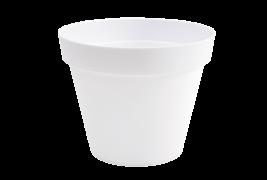 A111A6 Pot toscane blanc D30cm H26cm