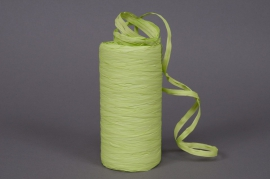 Roll of synthetic raffia light green 200m