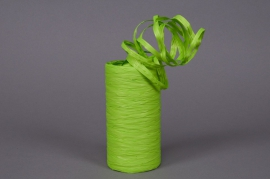 Roll of synthetic raffia mint green 200m