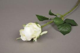 x286mi Rose bouton artificielle crème H54cm