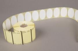 A006AI Rouleau de 1000 étiquettes blanc 5 x 3.2cm