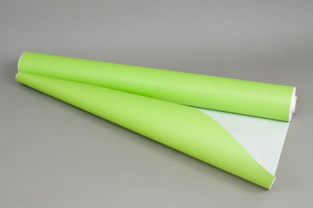 Rouleau de papier kraft blanc / vert pomme 0,8x50m